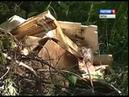 Контейнерная площадка на улице Спасской не в силах справиться с нагрузкой ГТРК Вятка