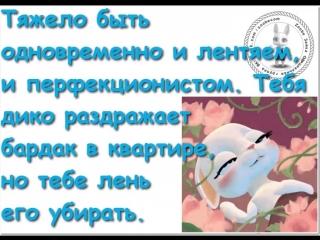 doc9646441_474501985.mp4