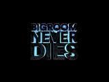 Hardwell &amp Blasterjaxx feat. Mitch Crown - Bigroom Never Dies (Visual Video)