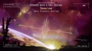 Edward Maya Vika Jigulina - Stereo Love (Bass Frequency Bootleg) [Free Release]