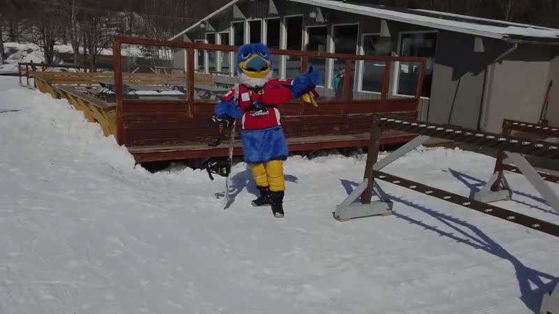 With the T-Birds on the road this week, Boomer finally had free time to head up to skiblandford and shred the slopes!