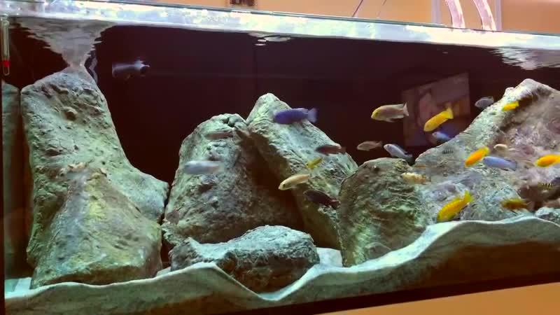 Mimmo Siena MALAWI 3D ROCKS