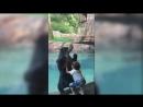 В зоопарке города Нэшвилл медведь принялся подражать 5-летнему мальчику