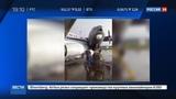 Новости на Россия 24 Во время грозы в аэропорту Минска столкнулись два самолета
