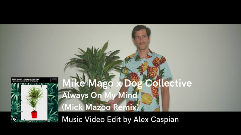 Mike Mago x Dog Collective Always On My Mind Mick Mazoo Remix Music Video Edit by Alex Caspian