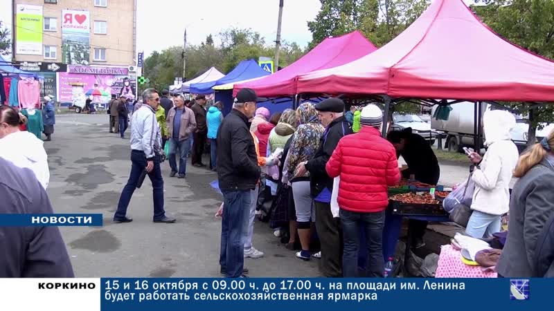 КОРКИНО: 15 И 16 октября с 9.00 до 17.00 на площади Ленина работает сельскохозяйственная ярмарка
