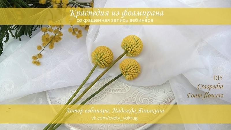 Краспедия из фоамирана мастер-класс / Craspedia | foam flowers | DIY
