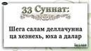 33 Шега салам деллачунна ца хезнехь юха а далар Iадлан