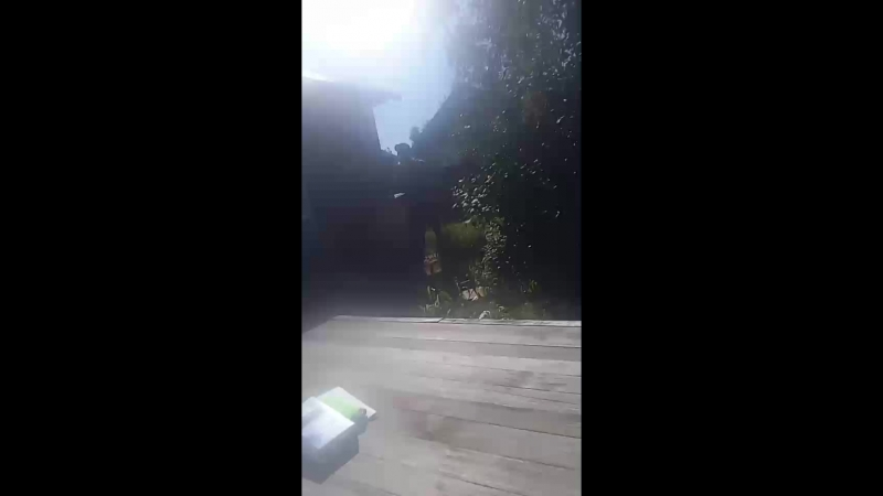 Дмитрий Толкачёв - Live