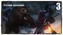 Rise of the Tomb Raider - Прохождение 3 БОЙ С МЕДВЕДЕМ ЛЮДОЕДОМ!