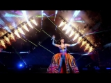 Katy Perry - Firework (From The Prismatic World Tour Live)