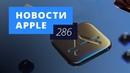 Новости Apple, 286 выпуск: чехол для iPhone XR и самое популярное в App Store