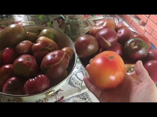 Консервированные томаты на зиму / мой любимый рецепт » Freewka.com - Смотреть онлайн в хорощем качестве