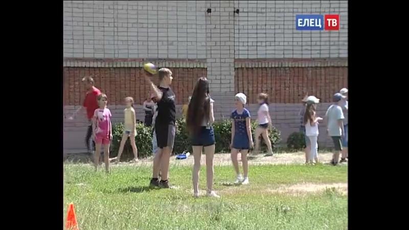 Полезный отдых в школьном оздоровительном лагере лицея № 5 работают профильные