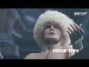 Скачать-Лучшие-БОИ-нокауты-Хабиба-Нурмагомедова-за-всю-карьеру-ММА-The-best-knockouts-of-Habib-Nurmagomedovсмотреть-онлайн_36