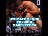 Бой Макгрегора и Нурмагомедова закончился массовой потасовкой