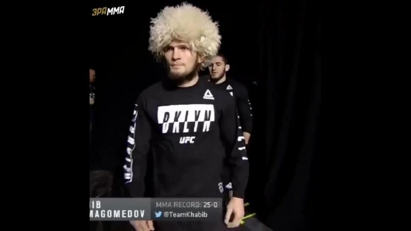 MMA-- UFC_FIGHT_BOXING_ on Instagram_ _Бой в разра.mp4
