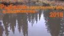 Рыбалка в девственной тайге на хариуса охота Лес Природа Лекарственные растения выживание сибирь лес