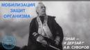 Выпуск 5. О.Д. Барнаулов о мобилизации защит организма при фитотерапии