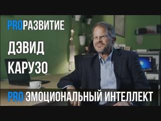 Дэвид Карузо про эмоциональный интеллект   PROРАЗВИТИЕ