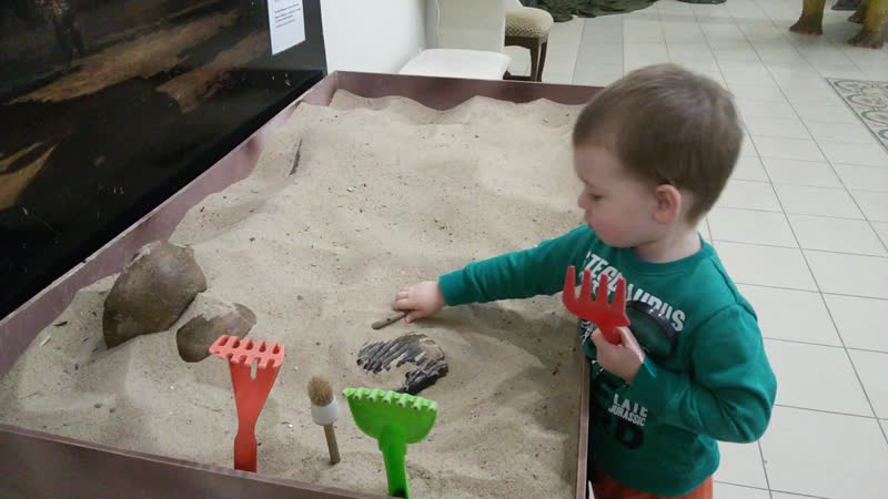 раскопки.выстовка динозавров