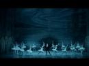 2018 (May June Май июнь) Sleeping Beauty Don Quixote Спящая красавица Дон Кихот - National Ballet of Ukraine - US tour