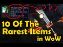 10 Of The Rarest Items in WoW