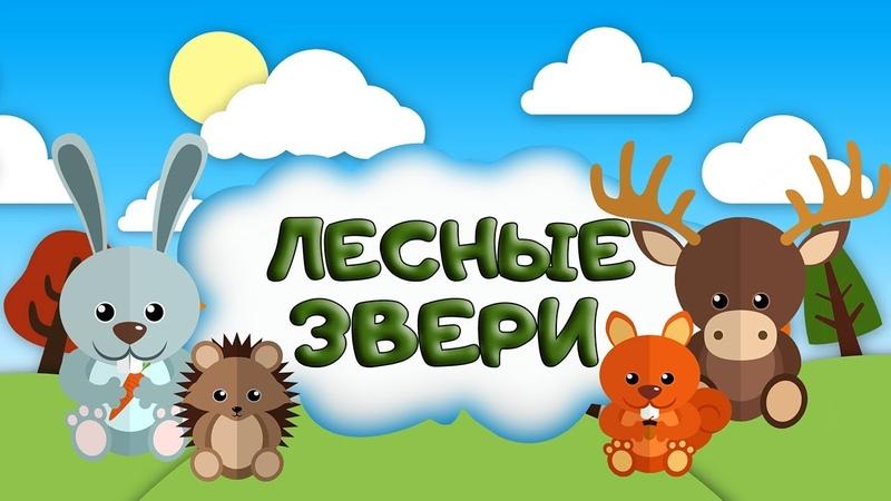 ЛЕСНЫЕ ЖИВОТНЫЕ Загадки про животных леса для детей учим зверей Кто живет в лесу