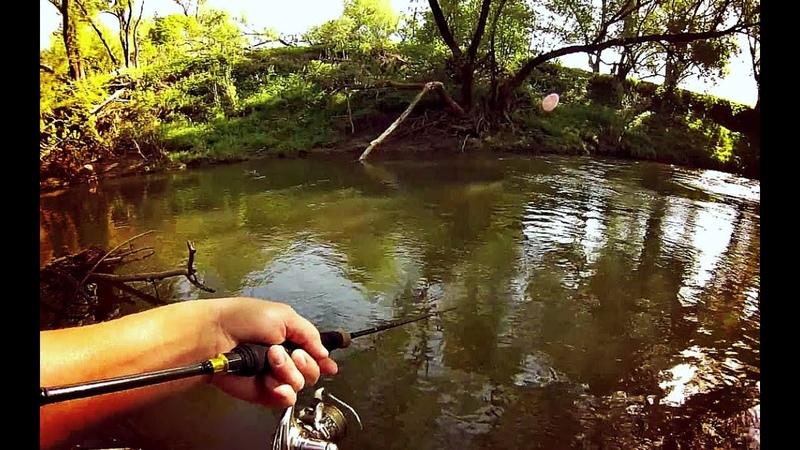 Ловите голавля осенью в октябре этим способом для невероятного улова!