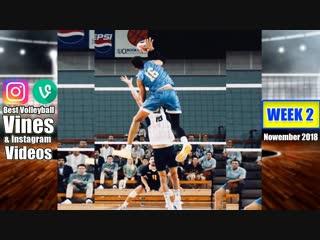 Best Volleyball Vines of November 2018. WEEK 2.