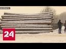 В Иркутске черные лесорубы взялись за оружие - Россия 24