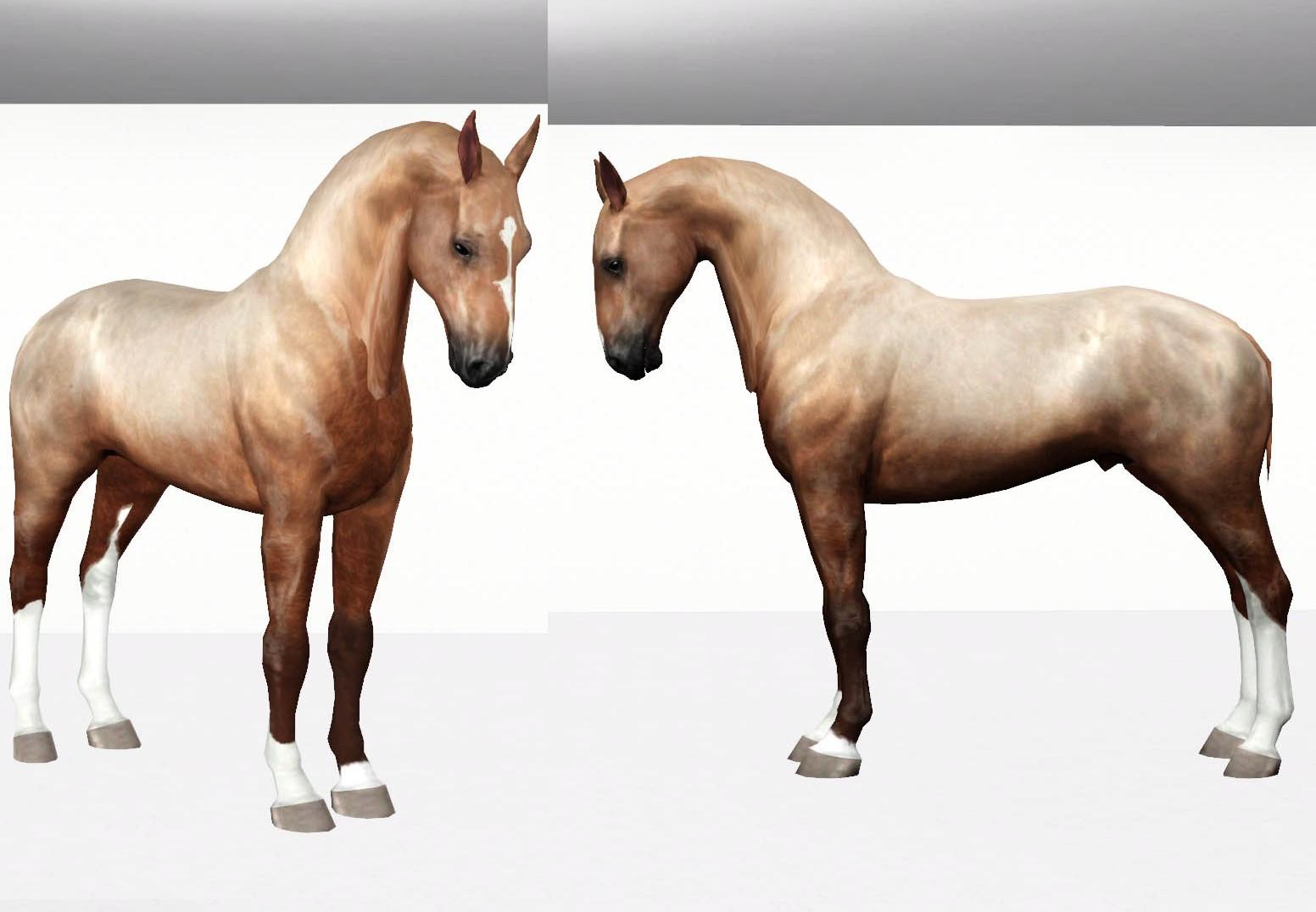 Регистрация лошадей в RHF 2 - Страница 9 6iKi8DpRqNM