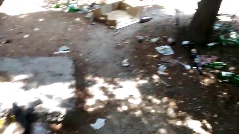 обочина, пластик, Ялта, 18.07.2018