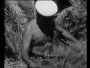 Mussolini trebbia il grano a Sabaudia la folla lo acclama