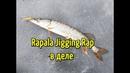 Ловля окуня и щуки на балансир Рыбалка на балансир Rapala Jigging Rap Зимняя рыбалка