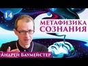 Метафизика сознания. Можно ли отрицать свободу воли? 14/14