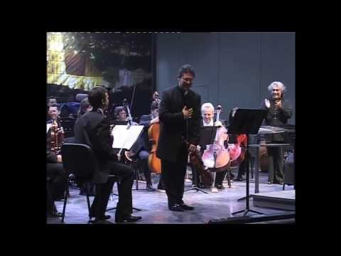 Hoffmeister Concerto in D Major for Viola Orchestra