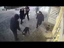 Стаффордширский терьер и собачники нападают на полицейского в Новосибирске