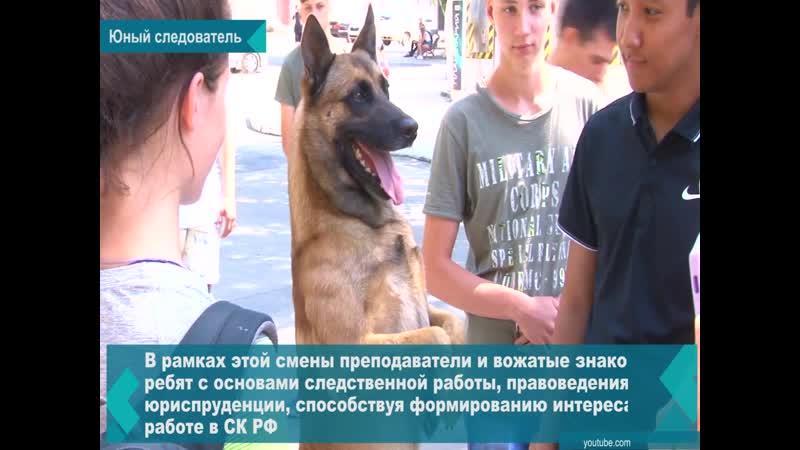 Семиклассница из братского Лицея №2 Полина Бердникова стала победителем конкурса