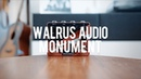 Walrus Audio Monument Harmonic Tap Tremolo (demo)