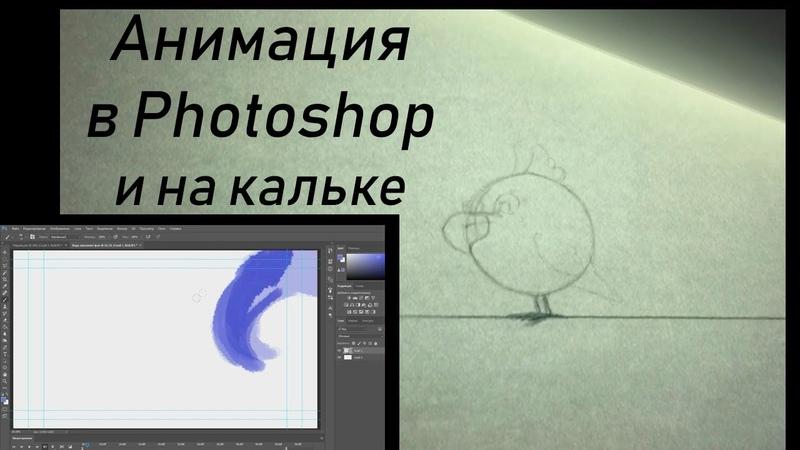 Анимация в Photoshop Анимация на кальке ВГИК