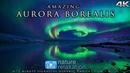 Northern Lights in 4K UHD: Alaska's Aurora Borealis 72 MIN Nature Relaxation Film Calming Music