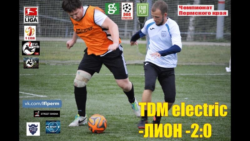 TDM electric-ЛИОН