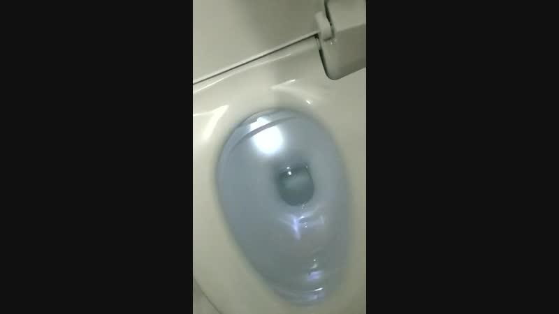 туалет тупой