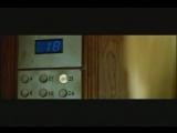 КОРНИ - 25-й этаж.mp4