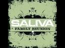 Saliva- Family Reunion