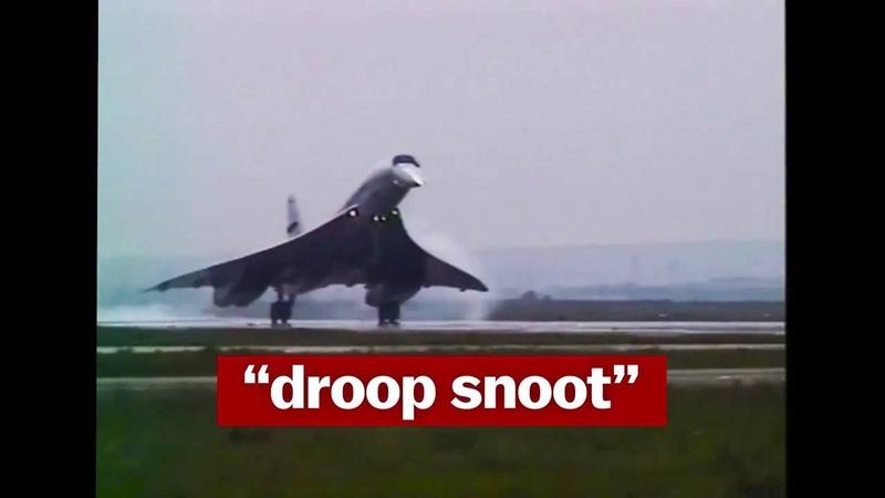Droop Snoot