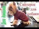 Как связать свитер для собаки своими руками.Одежда для собак на каналеДела домашние
