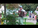 Мужик гармонист играет на гармошке в парке 4 августа 2018 года