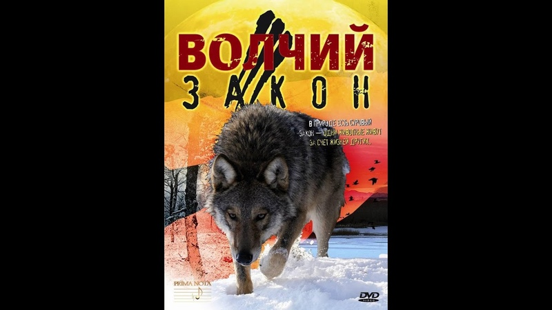 Волчий закон (Юлия Белюсева)д/ф 2008г.